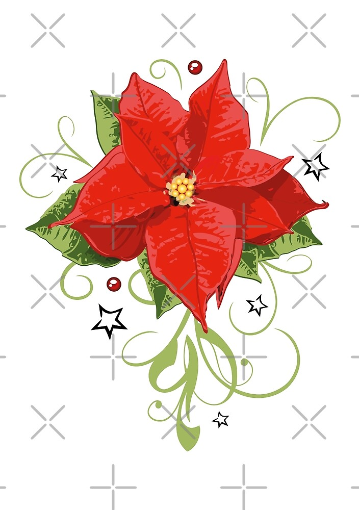 Roter Weihnachsstern, Adventstern, Weihnachten von Christine Krahl
