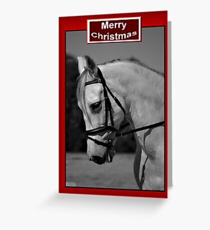 WHITE HORSE BLACK & WHITE CHRISTMAS CARD - MERRY CHRISTMAS Greeting Card