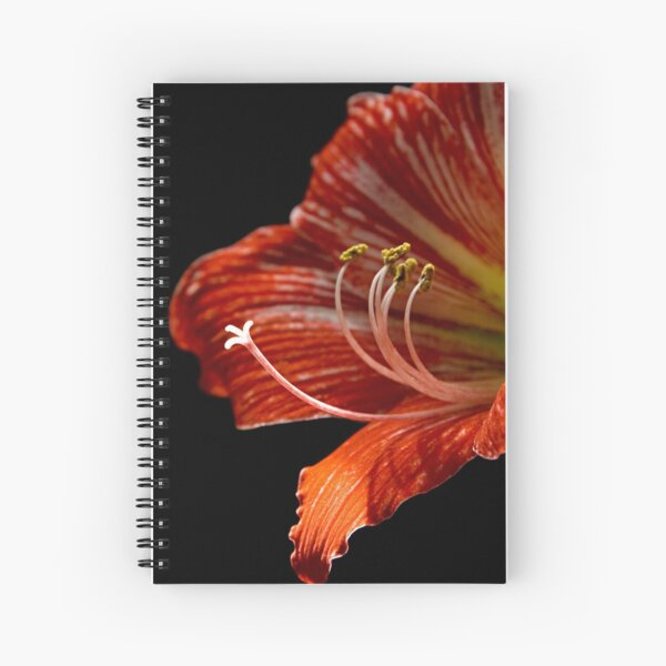 Sticky Fingers Spiral Notebook