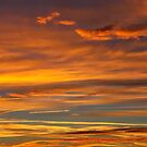 Golden Streaks Of A Dorset Sunrise by Susie Peek