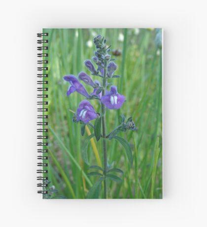 Florida Skullcap (Scutellaria floridana) Spiral Notebook