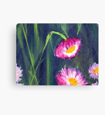 Paper Daisies - Acrylic on canvas - closeup01 Canvas Print