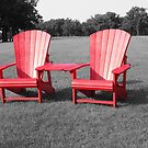 Adirondack Chairs in a Field of Grass by rhamm
