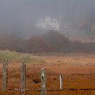 Through The Fog by Betsy  Seeton