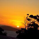 Sunset on Esperance by Citrusali