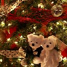 Beary disco Christmas! by rnrphoto98