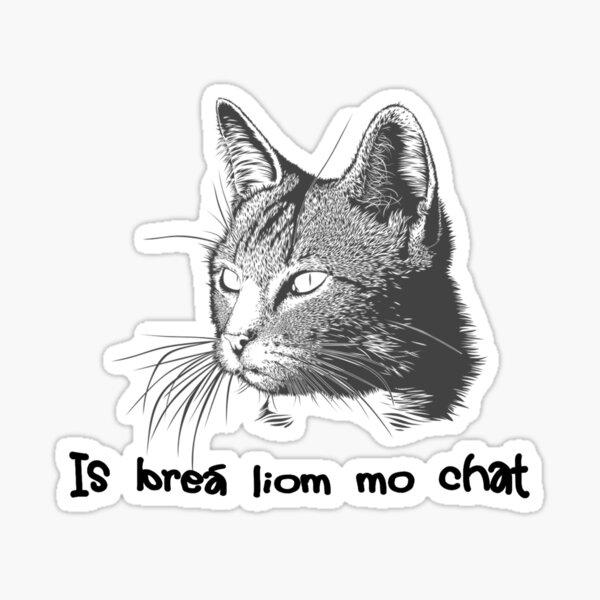 Is breá liom mo chat  Sticker
