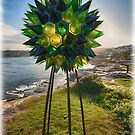 23 Sculpture by the Sea 2018 by andreisky