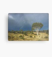 an awe-inspiring Australia landscape Metal Print