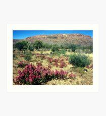 a vast Australia landscape Art Print