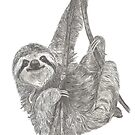 Norman the Sloth by sarahgeefineart