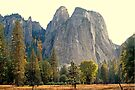 """""""Cathedral Rocks"""" by Lynn Bawden"""