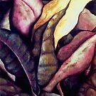 Shroud by Denise R  Fleming