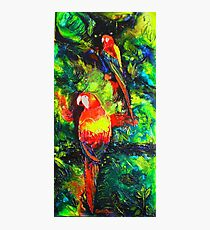 Midnight Parrot Symphony Photographic Print
