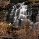 NoName Falls by Chintsala