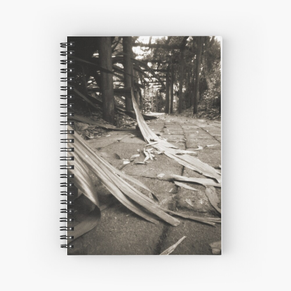 Walkway Spiral Notebook