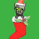 Christmas cat by Bwiselizzy