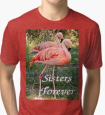 T - Sisters Forever Tri-blend T-Shirt