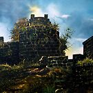 fort by farooquesha