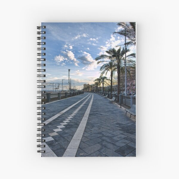 Il passiatore, Catania Spiral Notebook