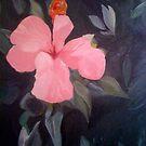Bahamian Pink by leystan