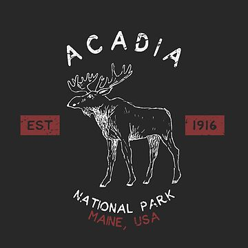 Acadia National Park Vintage Souvenir Maine by fuller-factory