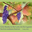 Give Thanks by Diane Hall