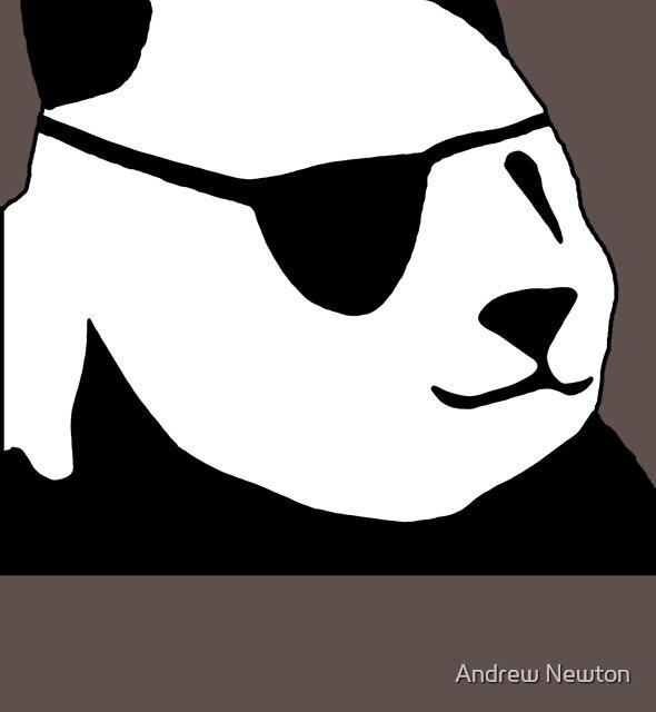 bad panda by Andrew Newton