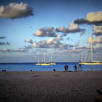 2009/08/05 h: 19.42 the beach by incant