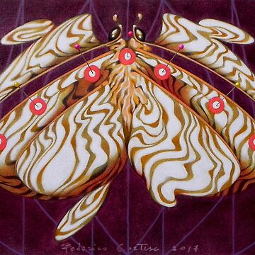 The albino butterfly by ico1971