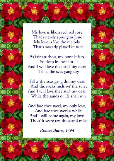 The theme of love in a red red rose by robert burns