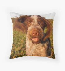 Brown Roan Italian Spinone Puppy Dog In Action Floor Pillow