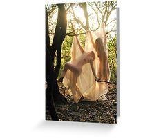 Les nymphes qui dansent Greeting Card