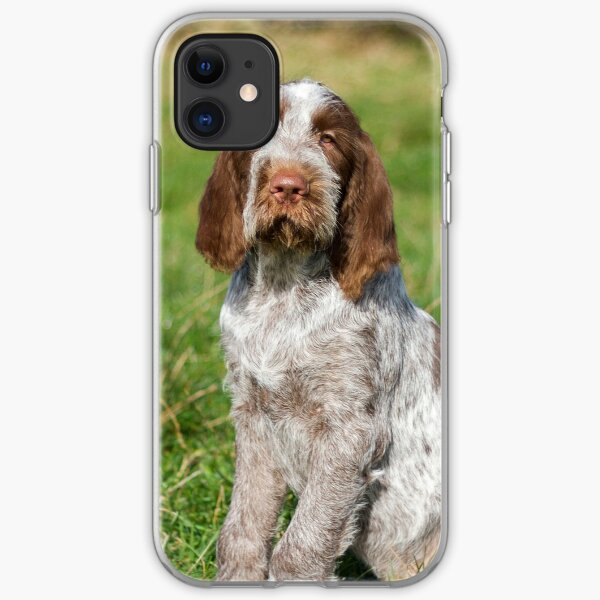 Brown Roan Italian Spinone Puppies iPhone Soft Case