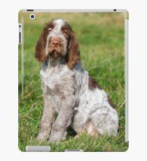 Brown Roan Italian Spinone Puppies iPad Case/Skin