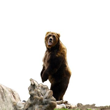 Bear Naked Background by ChadKroll