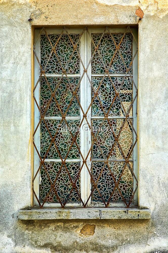 Elaborate window by Silvia Ganora
