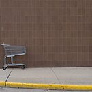 Shopping Cart by rdshaw