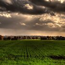 Priory Farm  by Nigel Bangert