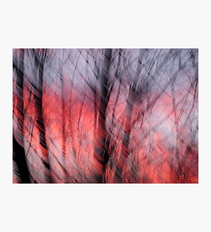August Winds Photographic Print