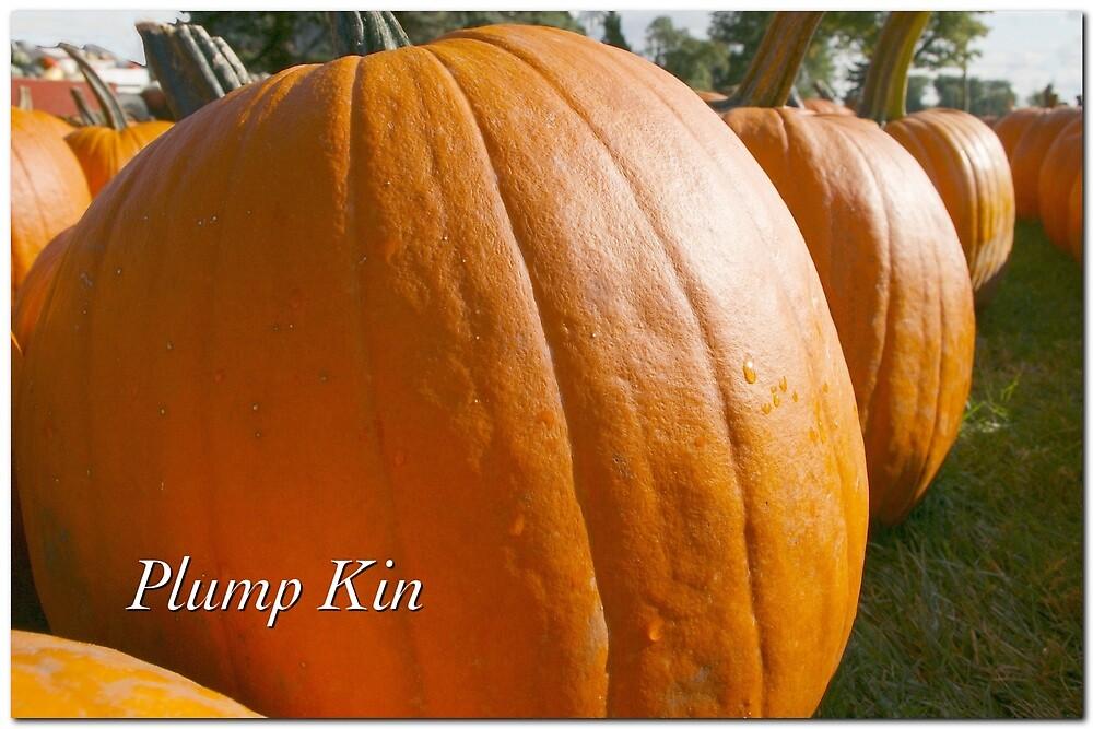 Plump Kin by JpPhotos