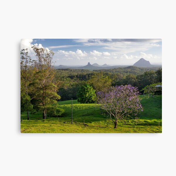 Glasshouse Mountains with Jacaranda Canvas Print