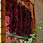 Hanging Chilis by Debby Pueschel