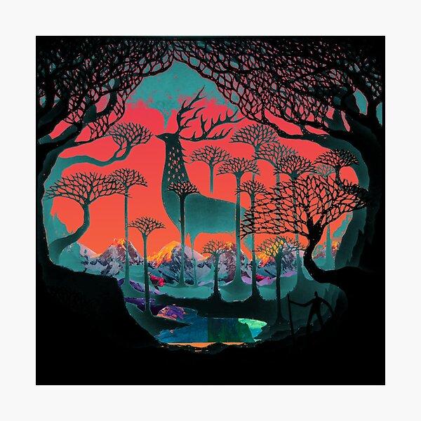 Esprit de la forêt - Illustration des terres boisées Impression photo