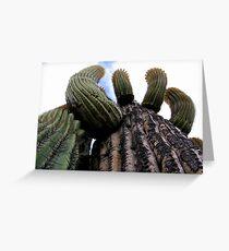 Sonoran Scenery Series ~ 1 Greeting Card