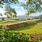 God's own County, North Yorkshire by Stephen Knowles