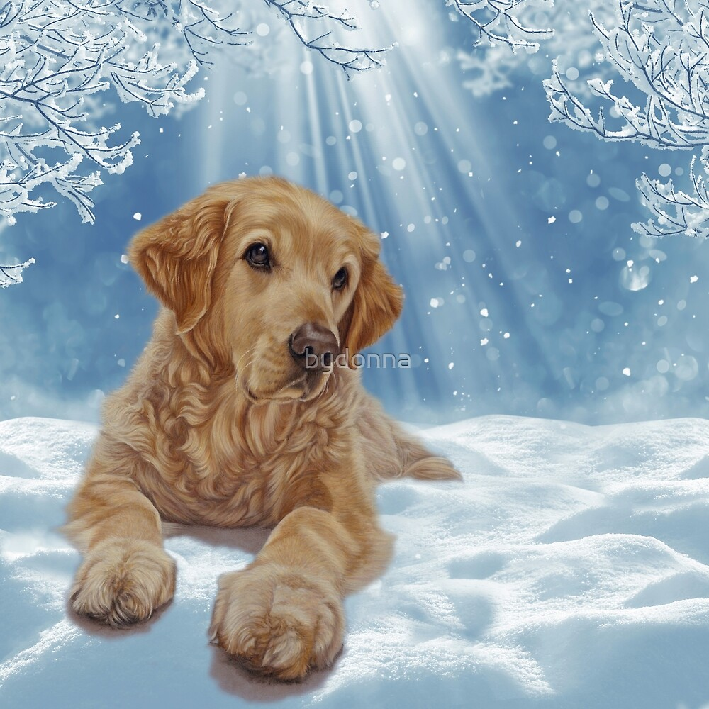 Golden Retriever - All I Want For Christmas by bydonna