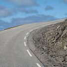 Road to Nowhere, Norway. by ellismorleyphto