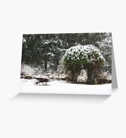 I'm SNOW Excited!!! Greeting Card