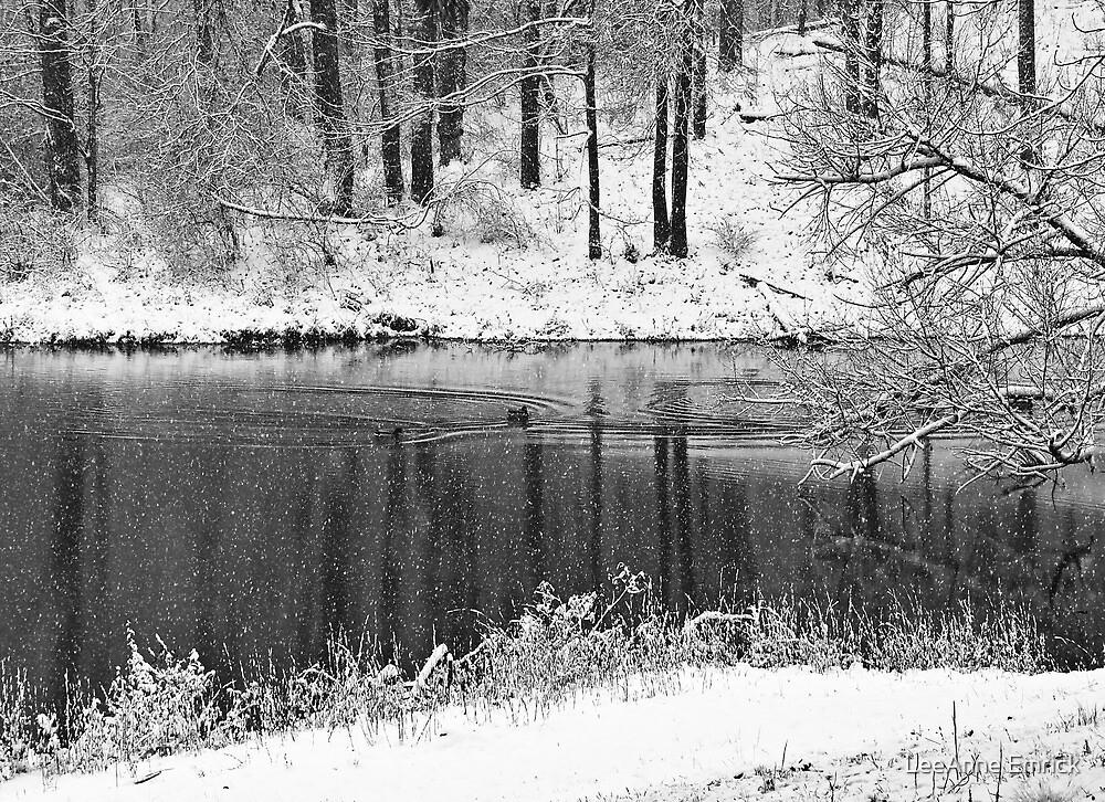 A Snowy Scene by LeeAnne Emrick
